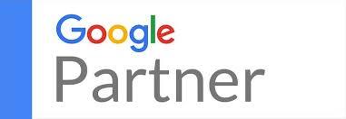 dreamdigital.ie_google partner_google ads and seo agency