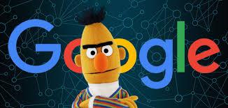 seo_agency_google bert_seo services